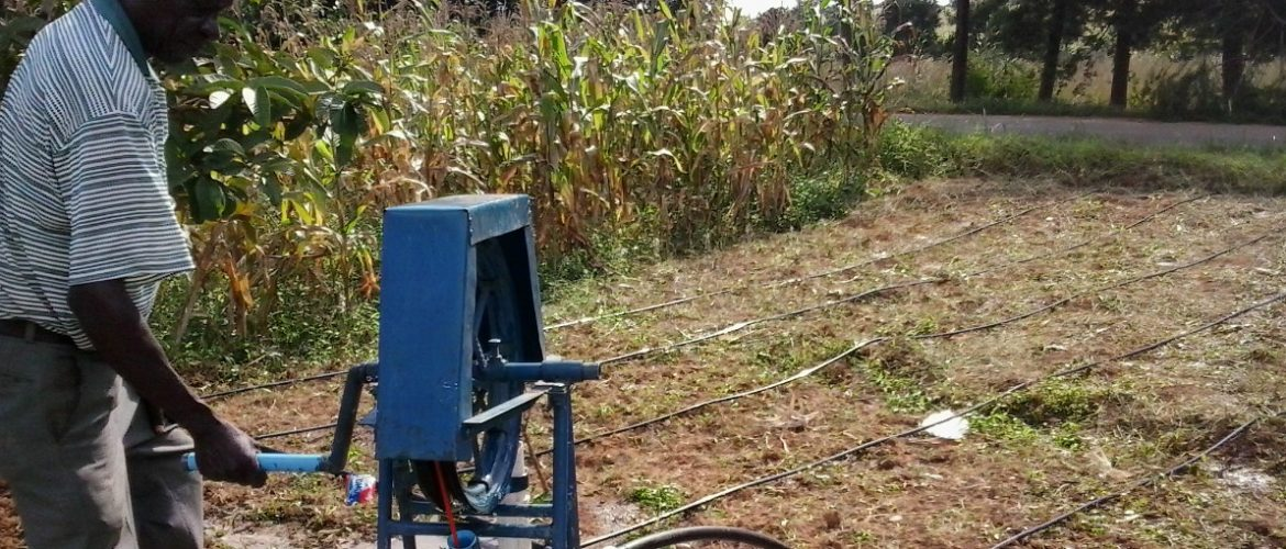 Irrigation through use of a Rope pump and low-cost drip tubes